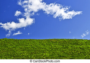 vert bleu, champ ciel