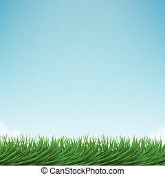 vert bleu, clair, herbe, ciel