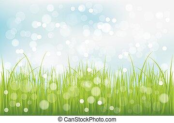vert bleu, herbe, ciel, sous
