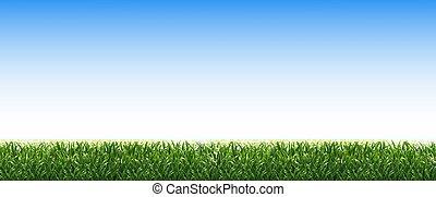 vert bleu, herbe, frontière, ciel