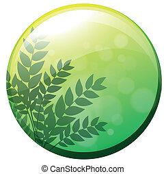 vert, cercle, frontière