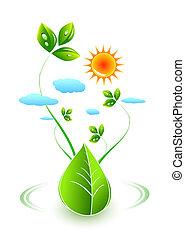 vert,  concept, feuille