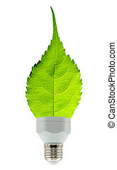 vert, concept