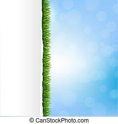 vert, déchiré, papier, herbe