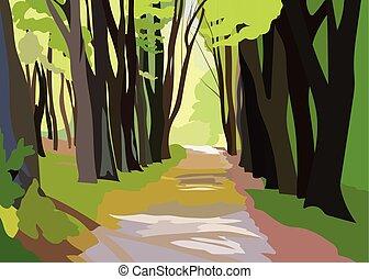 vert, forrest, arbres