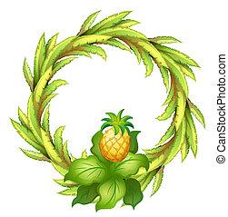 vert, frontière, ananas