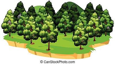 vert, isolé, paysage, nature