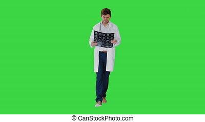 vert, marche, écran, examiner, docteur, calculé, chroma, tomographie, key., concentré, quoique, mâle