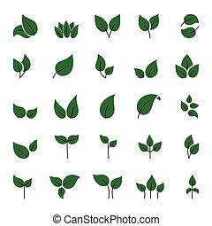 vert, mettez stylique, image, elements., vecteur, feuilles, illustration, ceci