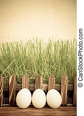 vert, oeufs, herbe, paques