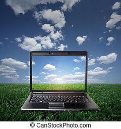 vert, ordinateur portable, herbe, jour ensoleillé