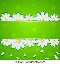vert, pâquerettes, fond