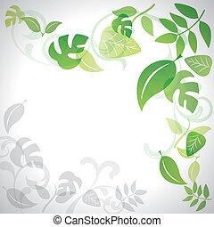 vert, pousse feuilles, fond