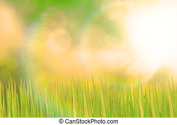 vert, prairie, et, lumière soleil