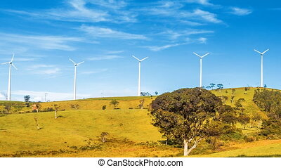 vert, turbines, colline, vent