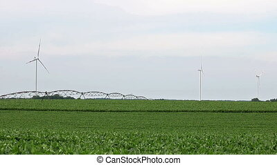 vert, turbines, vent, champ