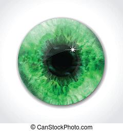 vert, vecteur, oeil, pupille, macro.