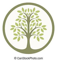 vert, vie, arbre