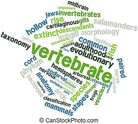 Vertebrate - Abstract word cloud for Vertebrate with related...