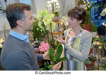 verticaal, aankoop, man, orchidee