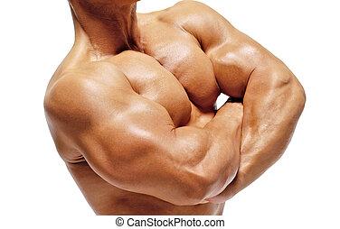 verticaal, bodybuilder, jonge, man.