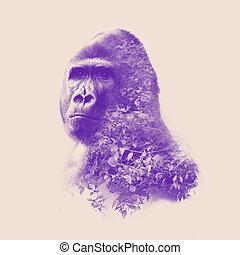 verticaal, dubbele blootstelling, effect, gorilla
