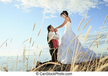 verticaal, paar, kunst, boete, trouwfeest