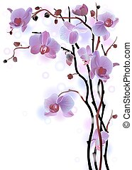Vertical background with violet orchids