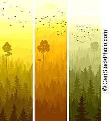 Vertical banners coniferous wood.