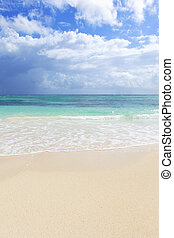 vertical beach