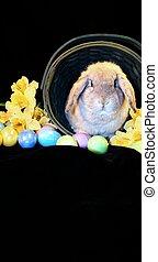 Vertical Easter