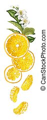Vertical fruit decor line with orange fruit halves, leaves, flowers and sllices made in realistic graphic design vector drawing