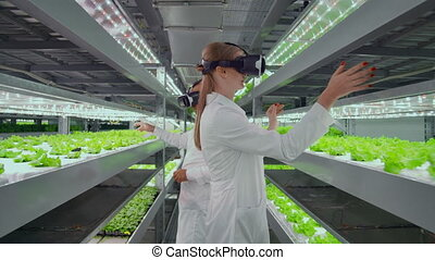 Vertical hydroponics plantation man and woman in white coats use virtual reality technologies simulating interface operation