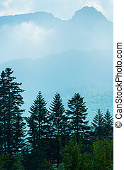 vertical landscape - pine forest, mountains and light mist in the morning
