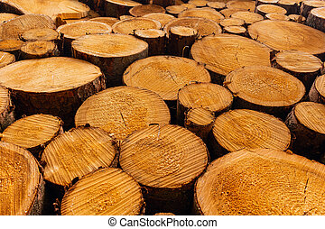 Vertical natural wood decor background.