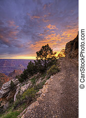 Vertical of Sunset along Grand Canyon trail