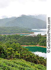 Vertical photography of amazing Thousand Island Lake and tea plantations on the adjacent slopes. Green tropical forest around. Misty weather. Chinese landscape, Asia