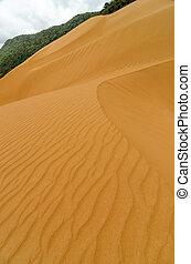 Vertical Sand Dune