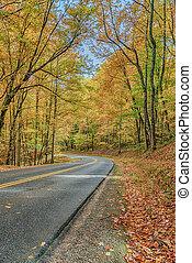 Curving Road Through Smoky Mountain Autumn Splendor