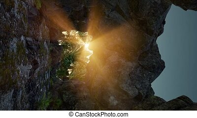 vertical shot of tropical cave at sunset