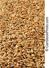 Vertical sunflower seed background