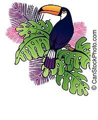 Vertical toucan background