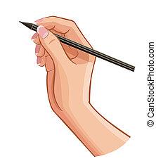 verticale, isolato, superficie, mano, penna, vettore, femmina, messaggio, bianco, ha scritto