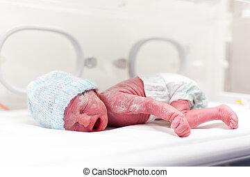 vertix, niño, incubadora, recién nacido, cubierto