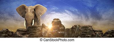 vertolking, sunset., olifanten, 3d
