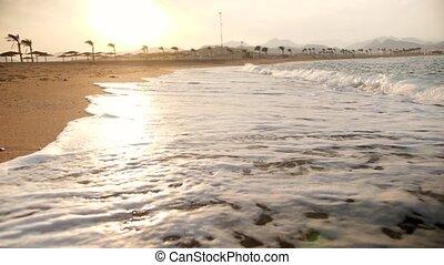 vertragen, groot, verbreking, oceaan, motie, stralen, video,...