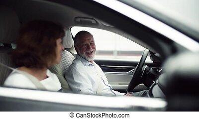 vertragen, het spreken., zittende , paar, motion., auto,...