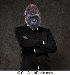 vervelend, gorilla, zakenman, zwart kostuum