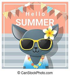 vervelend, zomer, zonnebrillen, kat, 3, achtergrond, hallo