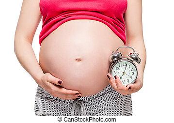 verwachting, van, een, toekomst, baby, concept, foto, zwangere vrouw, met, een, wekker